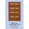 Шкаф-стол СШ-519